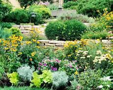 Vrtovi na kosini planiranje vrta na kosini